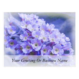 Ramo de azules tarjetas postales