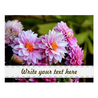 Ramo de flores rosadas y púrpuras tarjeta postal
