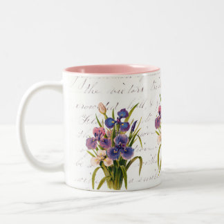 Ramo de iris - celebración de la primavera de taza de dos tonos