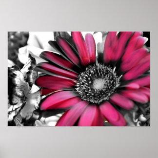 Ramo de la primavera en negro y blanco póster