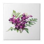 Ramo de orquídeas púrpuras con los helechos azulejo