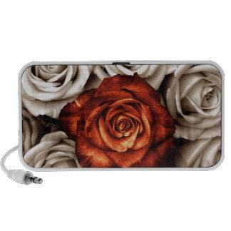Ramo de rosas blancos y rojos iPhone altavoz