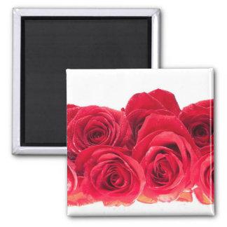Ramo de rosas rosados brillantes imán cuadrado