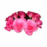 Ramo de rosas rosados esculturas fotograficas