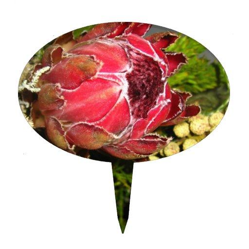 Ramo del Protea Decoración De Tarta