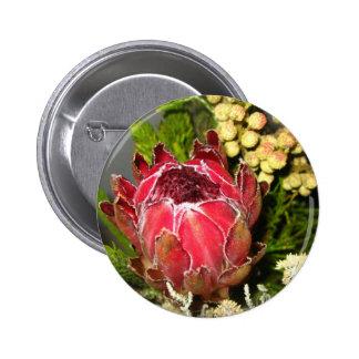 Ramo del Protea Pin