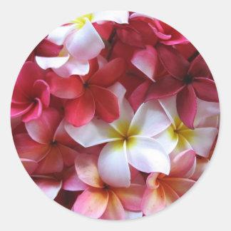 Ramo del racimo de flor del Plumeria Pegatina Redonda
