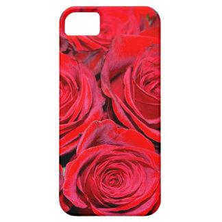 Ramo del rosa rojo iPhone 5 carcasa