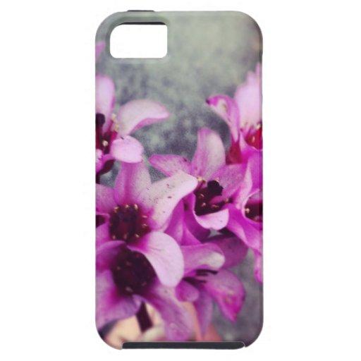 ramo en forma de corazón de la flor iPhone 5 coberturas