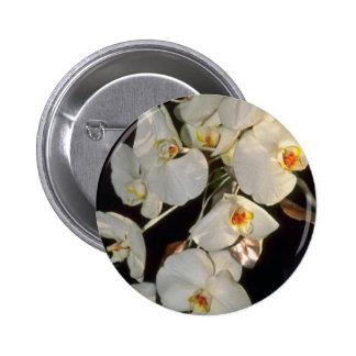 ramo nupcial de la orquídea blanca - flores del Ph Pins