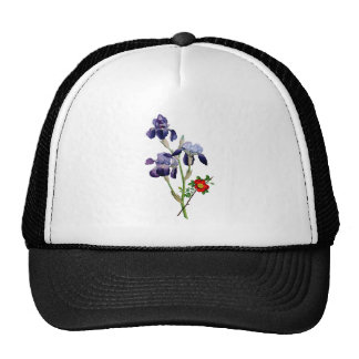 Ramo púrpura del iris de Jean Louis Prevost Gorros