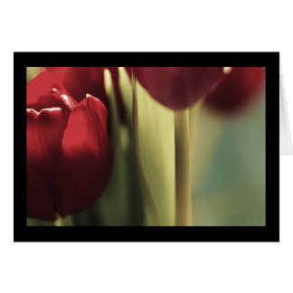 Ramo rojo, tulipanes, artography floral, tarjeta de felicitación