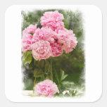 Ramo rosado afilado suave del Peony Colcomanias Cuadradases