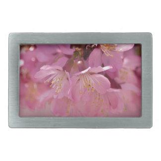 Ramo rosado delicado de las flores de cerezo de hebillas de cinturon rectangulares