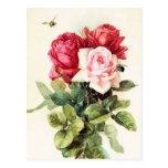 Ramo subió Victorian del vintage Postales