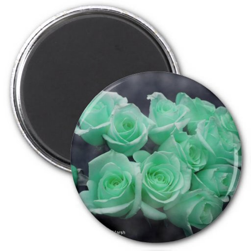 Ramo teñido menta de rosas imanes de nevera