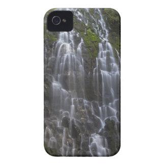 Ramona cae en el condado de Clackamas, Oregon Case-Mate iPhone 4 Protectores