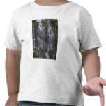 Ramona cae en el condado de Clackamas, Oregon Camisetas