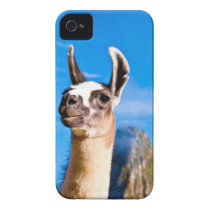 Ramona en Machu Picchu Case-Mate iPhone 4 Cobertura