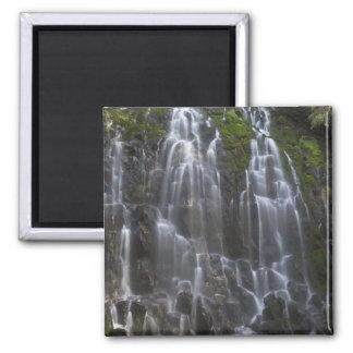 Ramona Falls in Clackamas county, Oregon Magnet