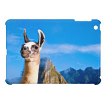 Ramona in Machu Picchu iPad Mini Cases