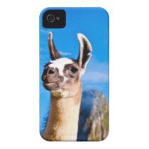 Ramona in Machu Picchu iPhone 4 Cover