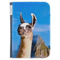 Ramona in Machu Picchu Kindle 3 Case