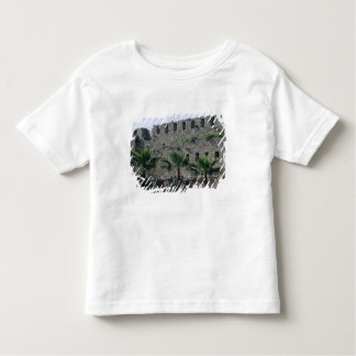 Ramparts from the citadel toddler t-shirt
