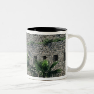 Ramparts from the citadel Two-Tone coffee mug