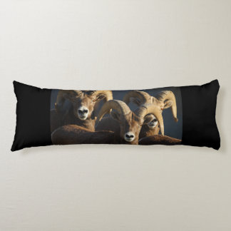 rams body pillow