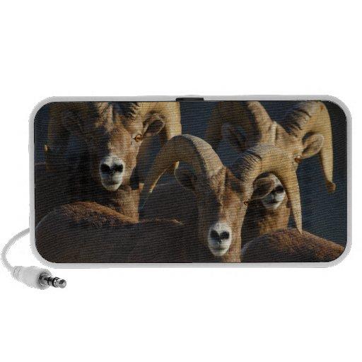 rams laptop speakers