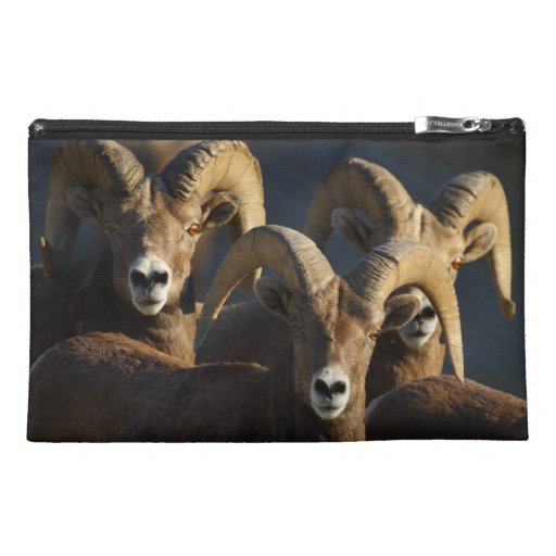 rams travel accessories bags