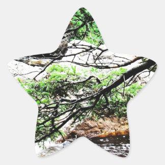 Ramus Star Sticker