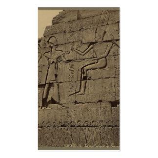 Ramusseum. Egipto circa 1867 Tarjetas De Visita