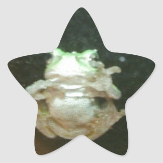 rana 004.JPG Pegatina En Forma De Estrella