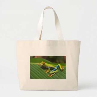 Rana arbórea bolsas