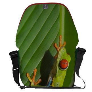 Rana arbórea bolsas messenger