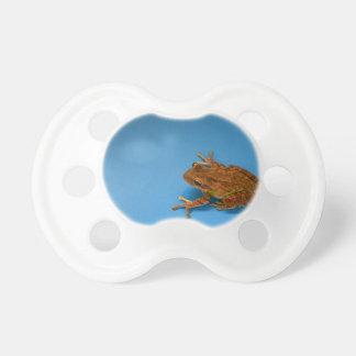 Rana arbórea contra fondo azul en la derecha chupetes de bebé