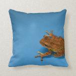 Rana arbórea contra fondo azul en la derecha almohadas