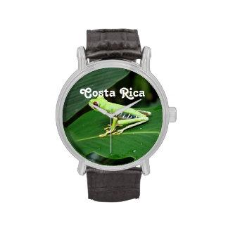 Rana arbórea de Costa Rica Relojes