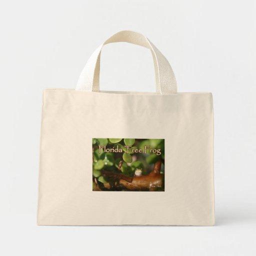 Rana arbórea del bebé en planta de los bonsais con bolsa tela pequeña