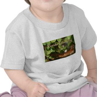 Rana arbórea del bebé en planta de los bonsais con camiseta