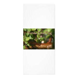 Rana arbórea del bebé en planta de los bonsais con plantillas de lonas