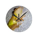 rana arbórea en estilo de la acuarela de la pared reloj