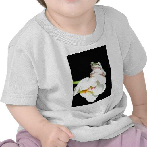 rana arbórea en orquídea camiseta
