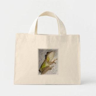 Rana arbórea grande que se aferra en la foto de la bolsas