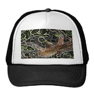 rana arbórea invertida en el árbol que pinta el an