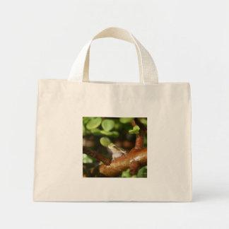 Rana arbórea lista para saltar de árbol de los bon bolsa de mano