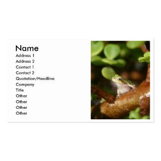 Rana arbórea lista para saltar de árbol de los bon plantilla de tarjeta de visita