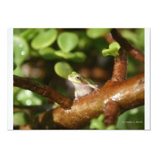 Rana arbórea lista para saltar de árbol de los comunicado personalizado